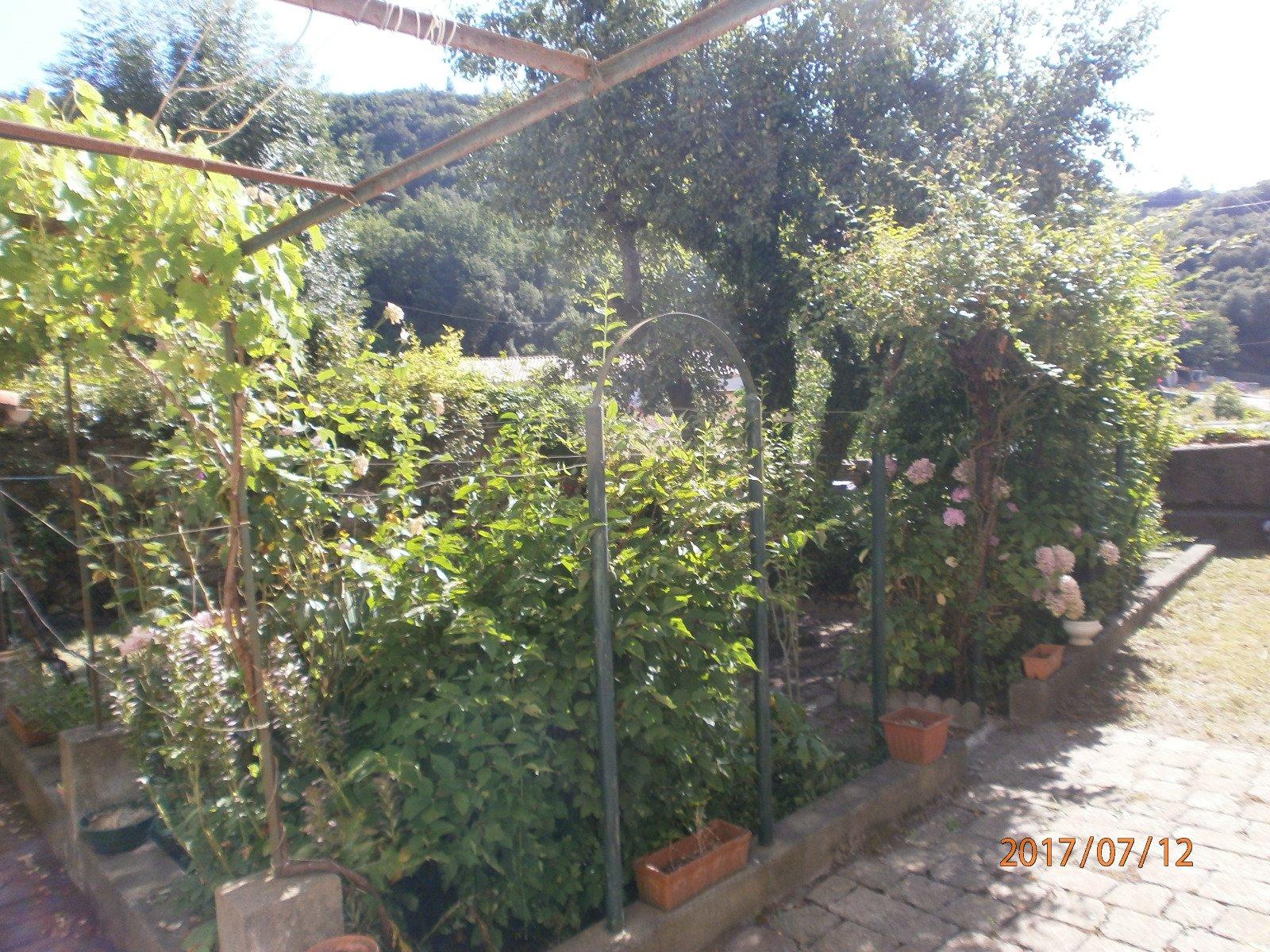 Huis en tuin in de schaduw for Huis in de tuin